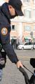 Sicurezza capodanno a Roma, la questura invita a segnalare anomalie al 112